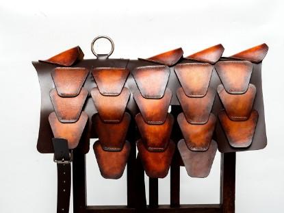 Image de Brown Patina Leather Dog Armor 1/1